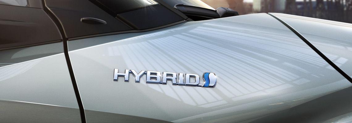 poza hybrid